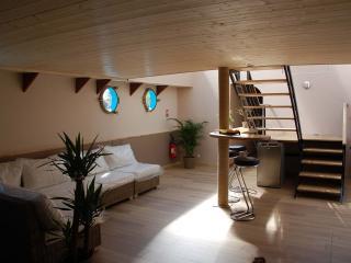 salon spacieux et lumineux