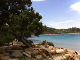 Solemare case vacanze  villetta no1