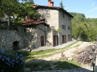 Charming Tuscan holiday farmhouse in the Castel San Niccolo commune, sleeps up to 8 and features private pool and jacuzzi