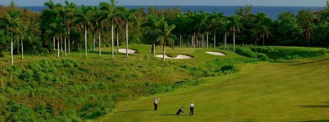 Best golf courses!
