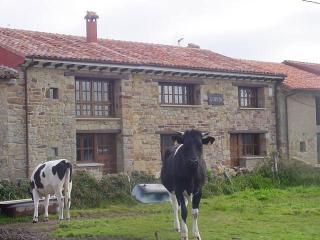 Bonita Casa 14 personas. 7 dormitorios, 6 baños, Villaviciosa