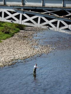 try fly fishing on the Spey