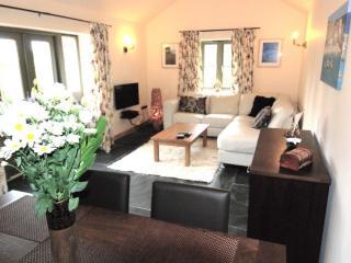 Luxurious modern sitting/dining room
