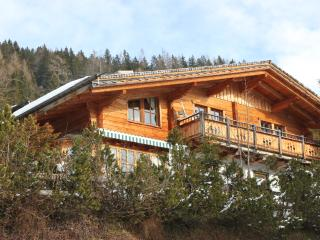 Chalet Arabella, luxury chalet with fire place, near slopes