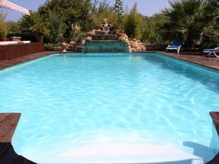 12x6 meter swimming pool with roman end