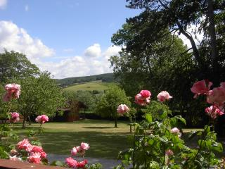 Woodcombe Lodges and Cottages-Cedar Lodge