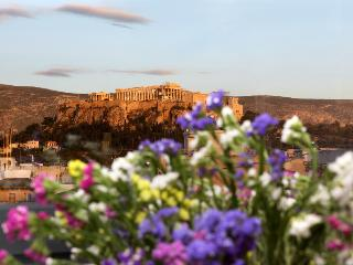 Apt with Heated Pool & Acropolis view, Atenas