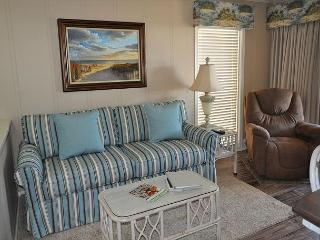 Ocean Dunes Villa 110 - 2 Bedroom 2 Bathroom Oceanfront Flat, Hilton Head