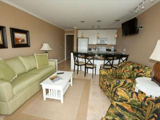 Deluxe Ocean Dunes Villa 205 - 2 Bedroom 2 Bathroom Oceanfront Hilton Head