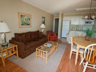 Ocean Dunes Villa 217 - 2 Bedroom 2 Bathroom Oceanfront Flat Hilton Head, SC
