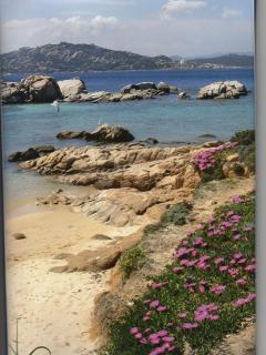 mare cristallino e oltre 300 spiagge questa è l'isola di La Maddalena