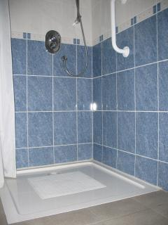 Lowlevel shower in en suite bathroom to a downstairs twin bedroom
