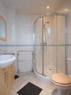 Large shower in Shower Room