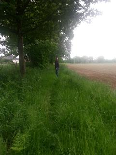Beautiful doggie walks just along the lane and footpath