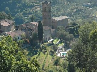 A view of Reusa from above showing the villa (to the right of the cypress tree) and swimming pool.