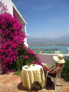 Side Terrace,  garden with view over lake Viñuela and Mount Maroma. Lemon tree pick your own lemons!