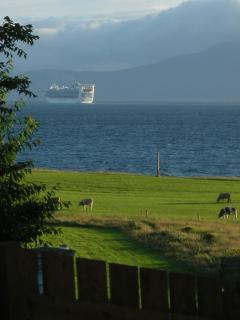 one of the many cruise ships that sail past.