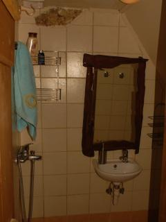 A small bathroom on the ground floor