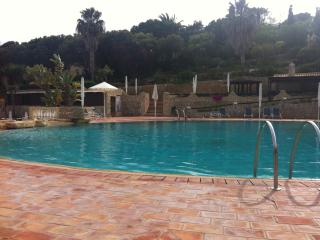 Swimming Pool and Spa area