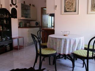 Apartments Tri vlake Viganj