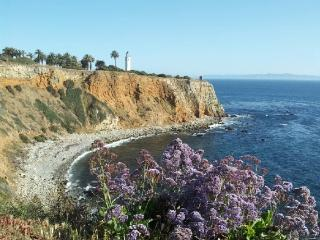 Amazing Beach Cliffs Location!, Los Ángeles