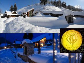 ski chalet Carmel