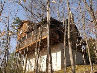 2 Bed Pet Friendly Cabin, 6 miles to town Gnatty Branch Village Pigeon Forge, Sevierville