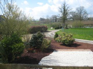 Landscaped garden at the front