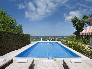 Villa Rosa, charming holliday house with a pool, Labin