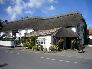 1 Croyde Manor Mews,  charming cottage in  Croyde