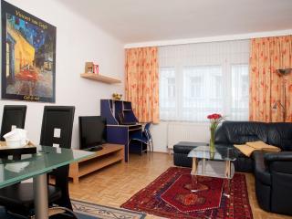 Family Apartment ApF21/7, Viena