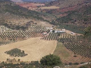 Casa Rural de 250 m2 para 8 personas en Cabra De S