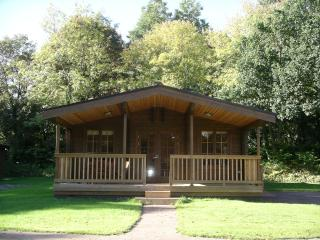 Willowbank Lodges/Bullrush, Pewsey