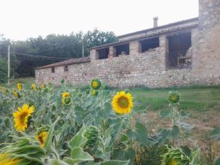 Apartamento para 8 personas en Monteriggioni