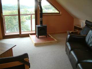 woodburning stove in lounge