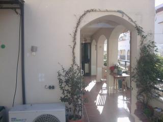 Balcony - Terraza- Terasse