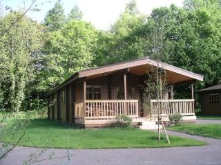 Willowbank Lodges/Dragonfly, Pewsey