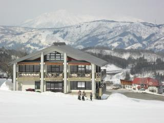 Large room in ideal ski lodge, Nozawaonsen-mura