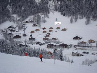 Chalet Rose from the ski slope, not necessary to take a car or a bus to get in Avoriaz