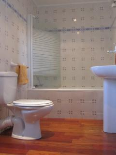 The upstairs bathroom with hand painted Italian tiles and hardwood floors