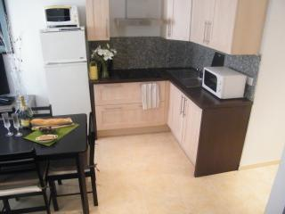 New kitchen with four burners, microwave, large fridge and fully equipped.