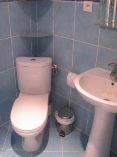 Toilet with sink and vanity.