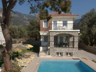 Our villa and large pool