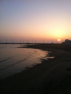plage à Arcachon à 300m