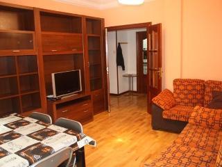Apartamento para grupos MUY CÉNTRICO - 14 PLAZAS, Logroño