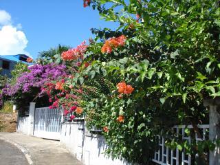 JARDIN DE CHRISTOPHE COLOMB, Basse-Terre Island