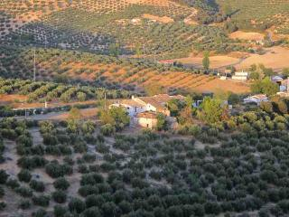 Olive Grove Farmhouse Apartment, Guadix
