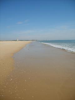 Manta Rota Beach - one of the best in the Algarve !