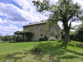3 bedroom hilltop farmhouse with stunning views of Tuscan landscape, private swimming pool, shaded terrace, children welcome