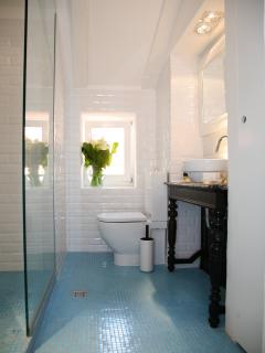 Bathroom - glass shower and antique wash basin